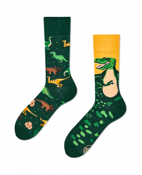 Chaussettes Dinosaures -...