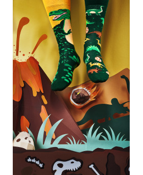 Chaussettes Dinosaures - Many Mornings